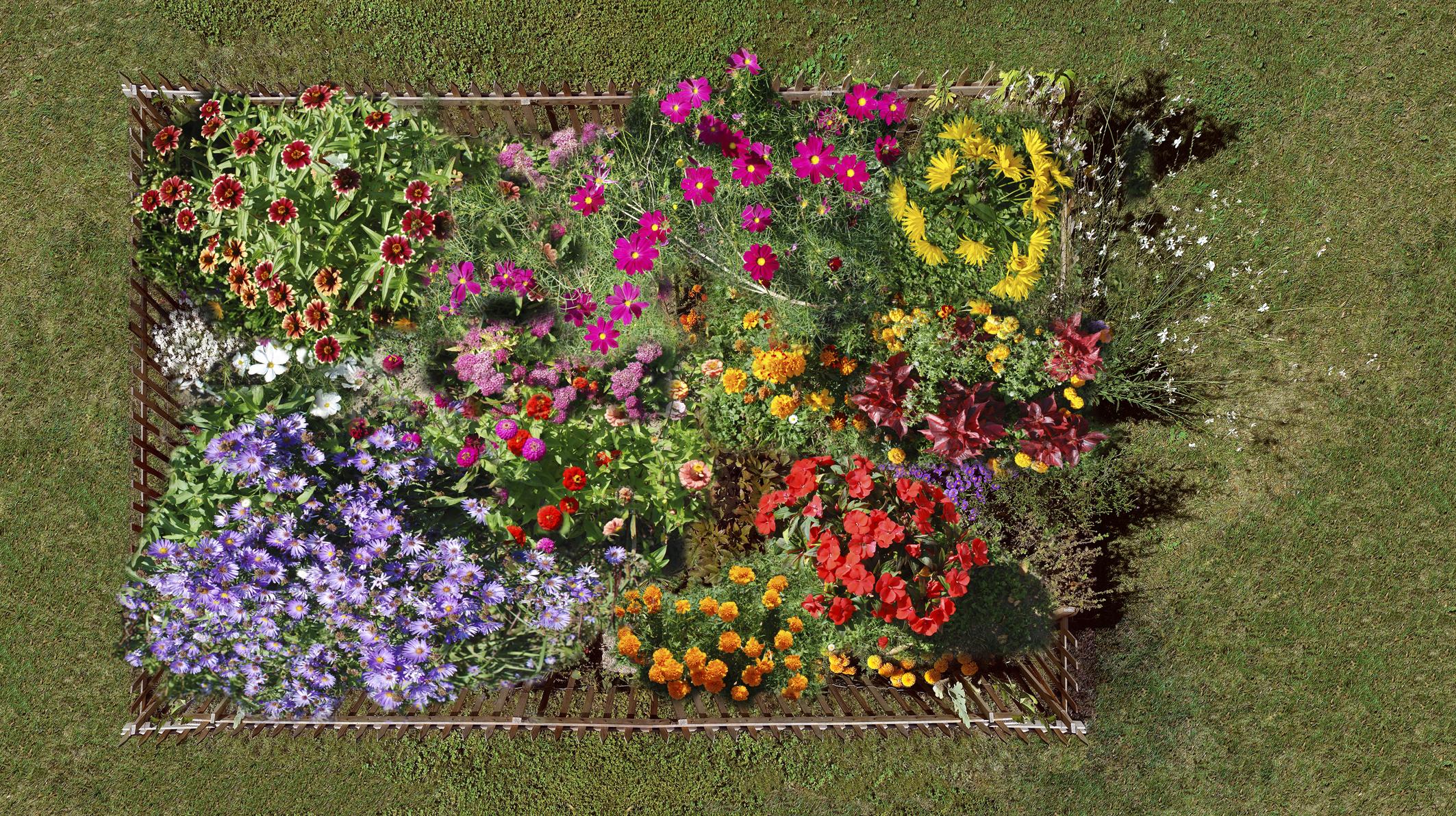H pital des enfants de 1897 aujourd 39 hui - Fabriquer un jardin suspendu ...